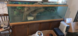 Fish tank for Sale in Belleville, IL