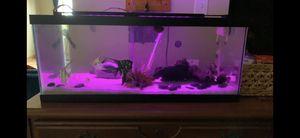 20 gallon long aquarium tank for Sale in Joliet, IL