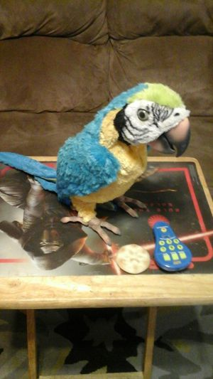 Hasbro furreal friends talking parrot squawkers mccaw interactive toy for Sale in Chicago, IL