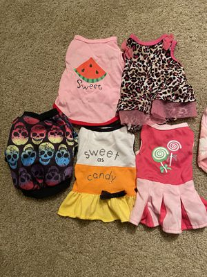 Puppy or small dog outfits for Sale in Winston-Salem, NC