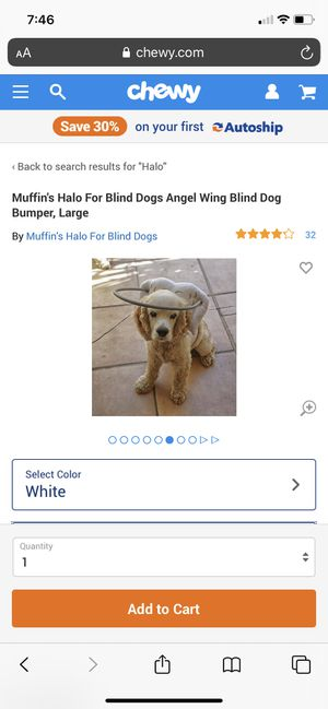 Muffins halo for blind dog for Sale in Las Vegas, NV