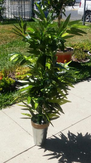 36 Inch Artificial Bamboo Plant for Sale in Los Angeles, CA