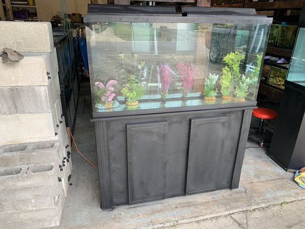 60 Gallon Fish Tank Aquarium with filter, stand, lights and lids