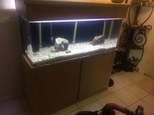 Fish Tank for Sale in Yorba Linda, CA
