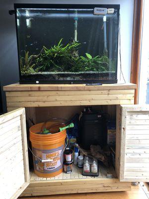 29 Gallon Tank+ Stand+ Fish for Sale in Alexandria, VA