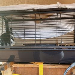 Rabbit And Cage For Sale for Sale in Miami,  FL