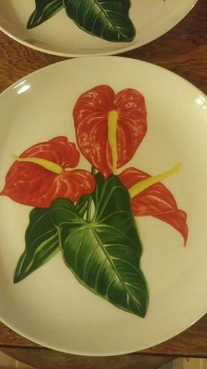 Beautiful Collectible 1940's Antherium Plates for Sale in Beaumont, TX