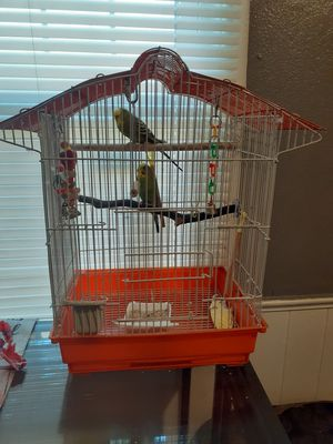 Birds with cage for Sale in Oklahoma City, OK