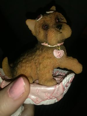 Collectables puppies for Sale in Rolla, MO
