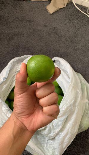 Lemons for Sale in CRYSTAL CITY, CA