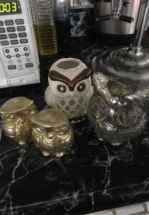 Owl for Sale in Glendale, AZ