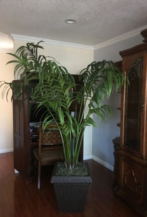 8 ft artificial / fake plants for Sale in San Jose, CA