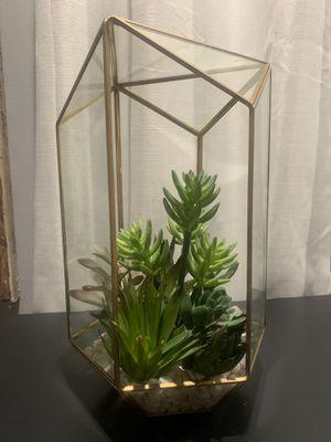 Succulent decor for Sale in Shorewood, IL