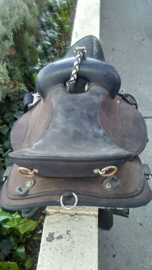 Saddle in Santee for Sale in Santee, CA