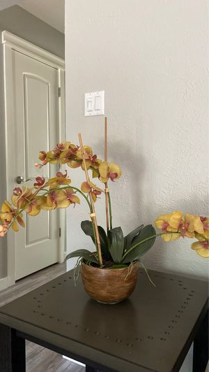 Orchid, artificial for Sale in Austin, TX