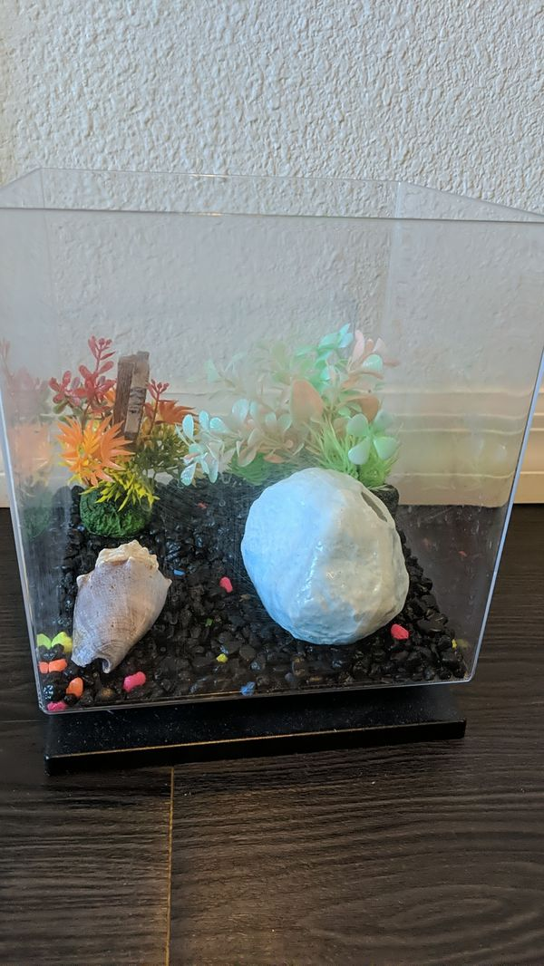 1.5 Gal Fish tank and all accessories
