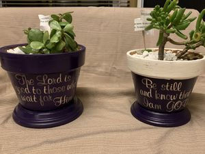Customized pot and jade plant for Sale in Frederick, MD