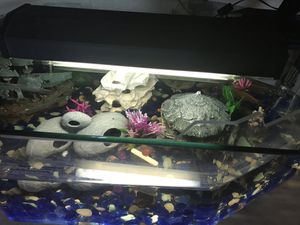 Light for Tank for Sale in Los Angeles, CA