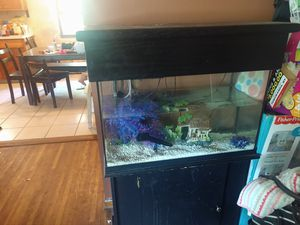 Aquarium for Sale in North Tonawanda, NY