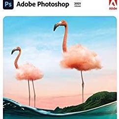Adobe Photoshop 2021 for Sale in Chicago, IL