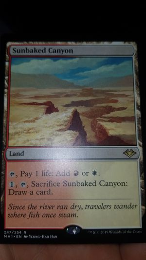 Mtg sunbaked canyon for Sale in San Marcos, CA