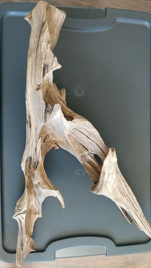 Drift wood for Sale in San Diego, CA