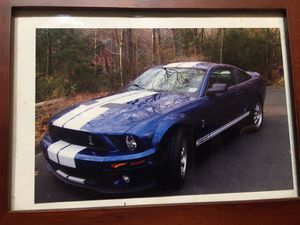 Ford 2008 GT 500 Shelby for Sale in Bethel, CT