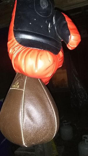 Gloves and speedbag for Sale in Mesick, MI