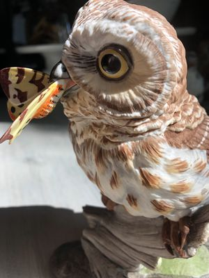 Boehn Porcelain Baby Owlet for Sale in East Jordan, MI