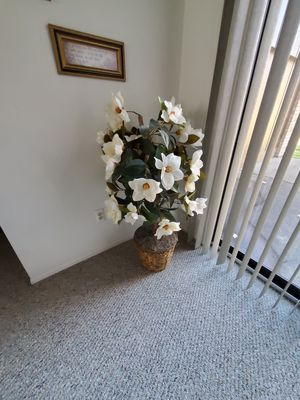 Decorative Floor Plant for Sale in Clinton Township, MI