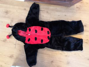 Ladybug Halloween costume toddler size for Sale in Oak Forest, IL