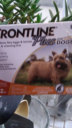 Frontline Plus for dogs for Sale in Tacoma, WA