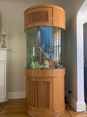 Aqua vin glass cylinder aquarium 150 gallons for Sale in The Bronx, NY
