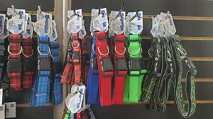 Leashs collars and harness for sell. for Sale in MONTGOMRY VLG, MD