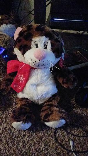 Toy cat for Sale in Abilene, TX