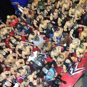 Wwe Big Lot With Titles And Ring for Sale in Winter Haven, FL