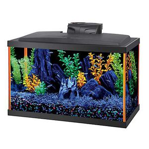 Aqueon NeoGlow 10 Gallon Aquarium Orange LED Fish Tank Kit for Sale in Empire, CA