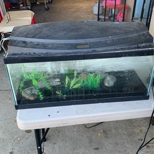 20 Gallon Long Tank for Sale in San Jose, CA