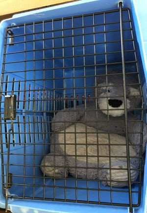 Dog crate for Sale in Overland, MO