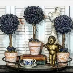 Blueberry Topiary Set for Sale in Orlando, FL