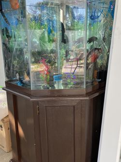 Fish Tank And Filters, 3 Oxygen for Sale in Tampa,  FL