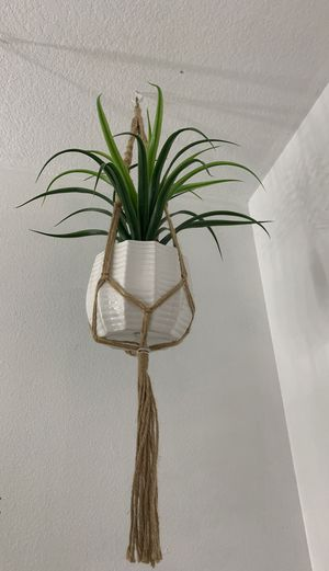 Pho hanging plant for Sale in Fontana, CA