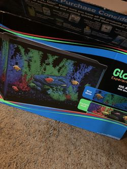 GLOFISH Starter Set Up for Sale in Greensburg,  PA