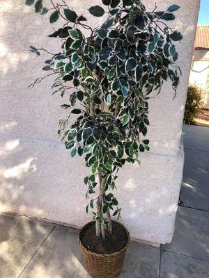 Plastic indoor tree for Sale in Las Vegas, NV