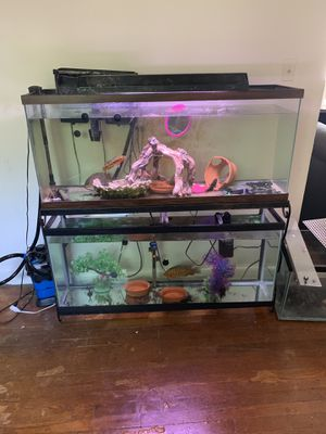 Two 55 gallon fish tank for Sale in Takoma Park, MD