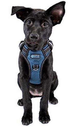 "Gunnison Reflective Dog Harness No-Pull Large 28""-37"" Chest Girth Blue for Sale in La Puente, CA"