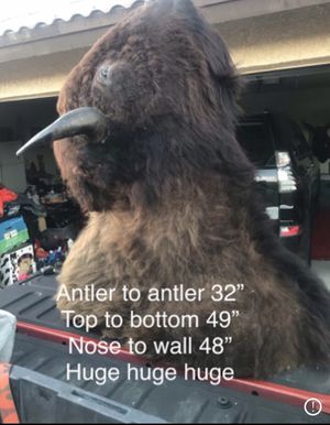 Bison buffalo taxidermy for Sale in Adelanto, CA