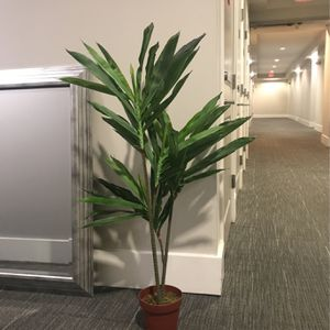Fake Plant 4ft Tall for Sale in Paradise Valley, AZ