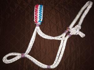 Mule tape quarter horse size halter with adjustable noseband for Sale in Phoenix, AZ