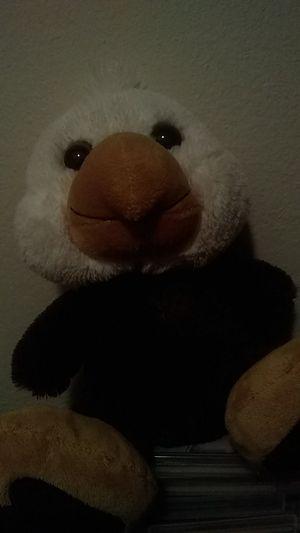 Eagle plushie for Sale in Dallas, TX